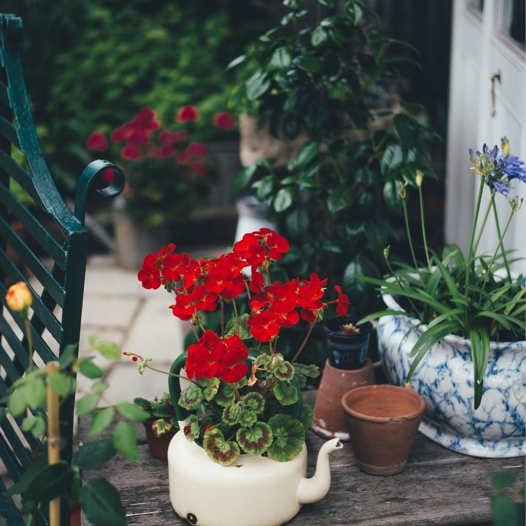 How To Do Container Gardening