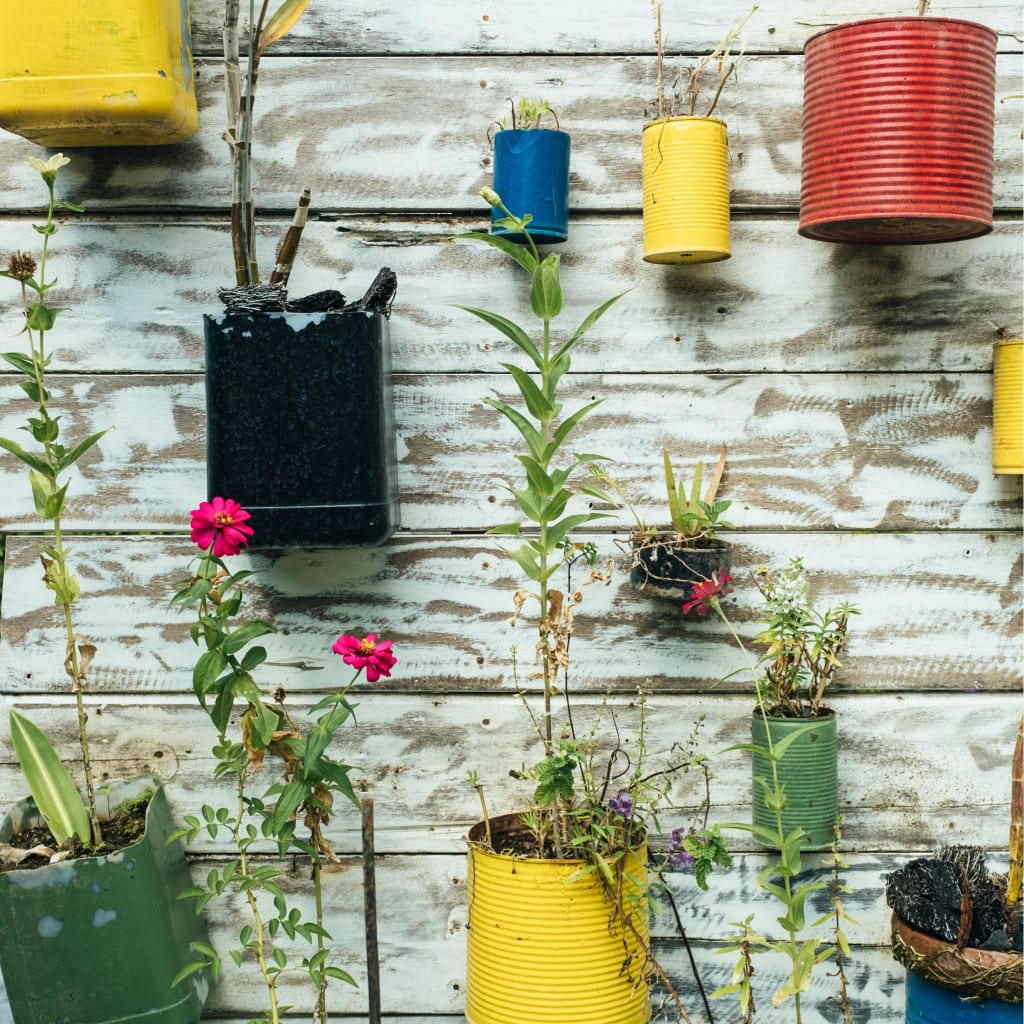 Things to use for container gardening